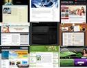 BEST- Deluxe WordPress Themes