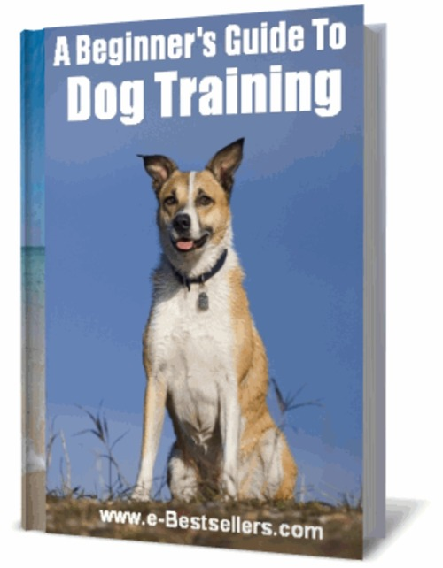 Product picture A Beginners Guide To  Dog  Training