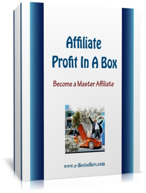 Product picture Affiliate Profit In A Box: Become A Master Affiliate