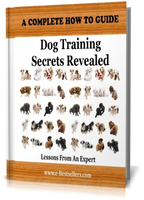 Product picture Dog Training Secrets Revealed: Lessons From An Expert