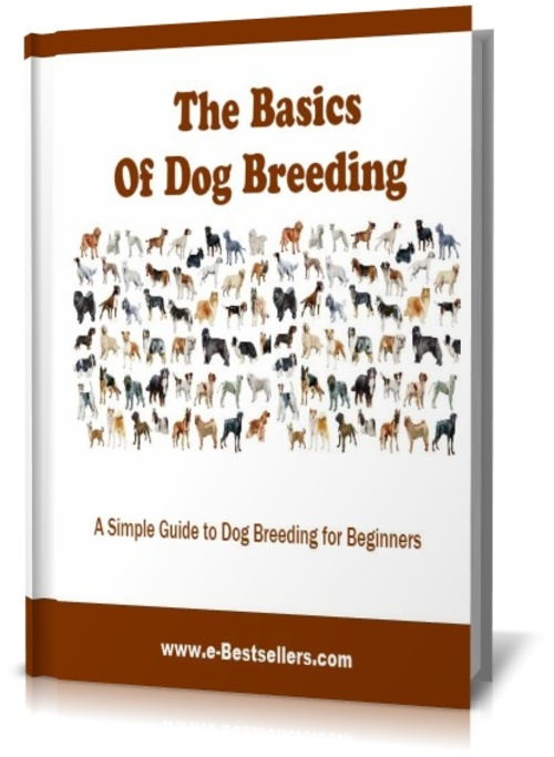 Product picture The Basics of Dog Breeding